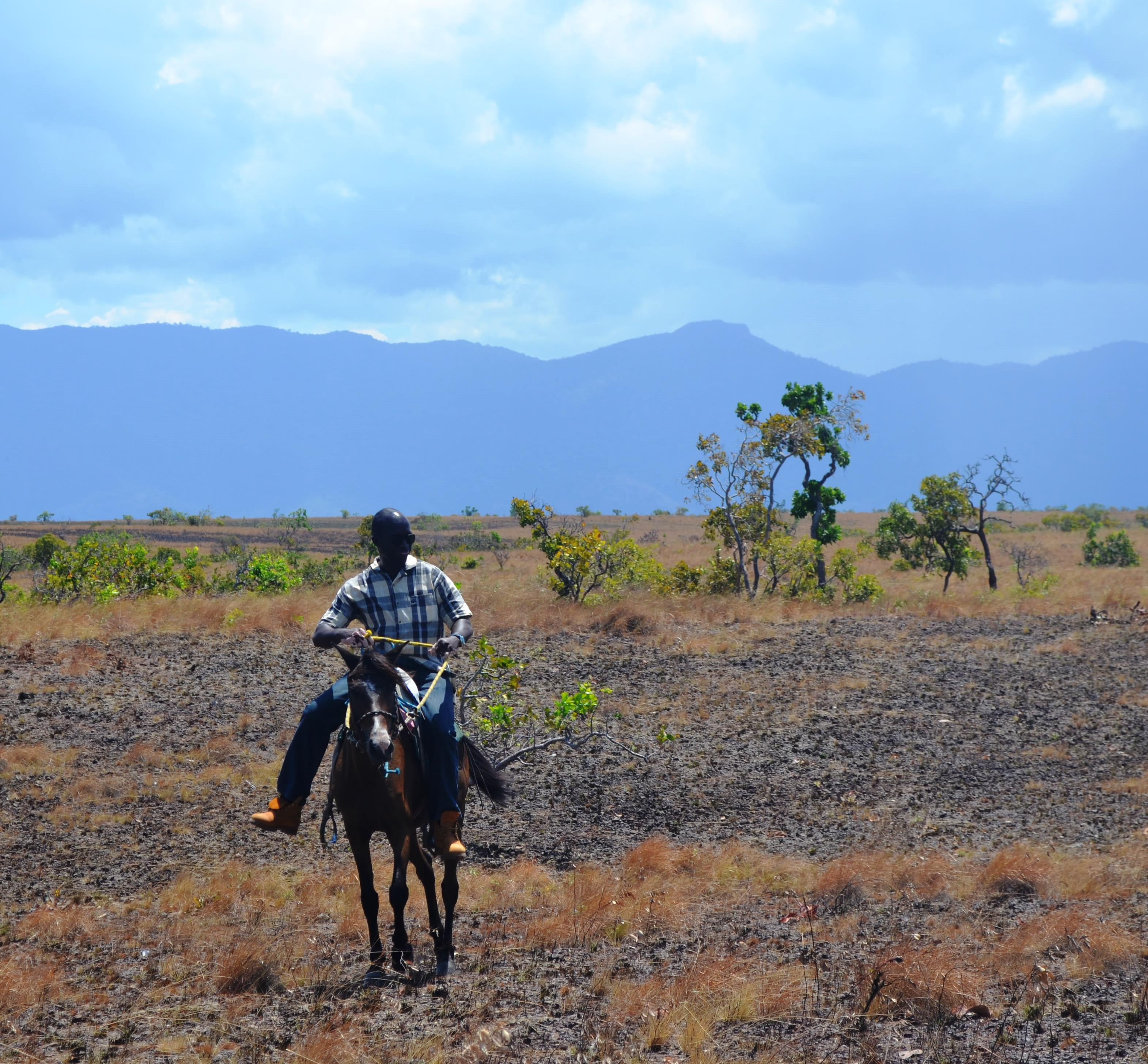 Horse back riding in the Rupununi