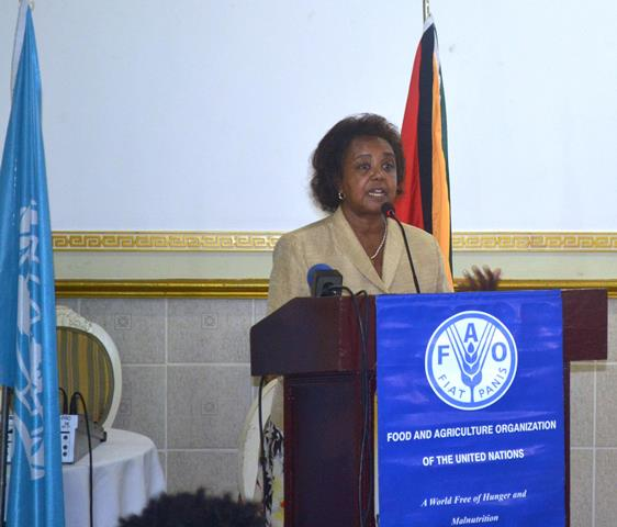UN Resident Coordinator, Khadija Musa addressing the gathering
