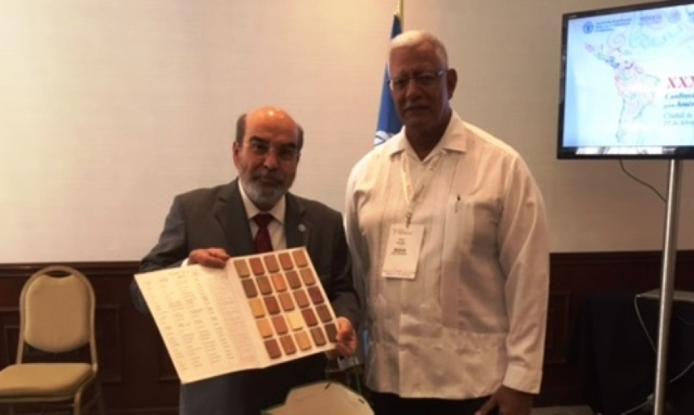 Agri Minister discusses Guyana's Country Framework with FAO Director General