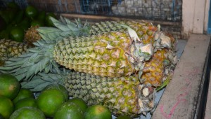 Pineapples for sale at Mon Repos Market