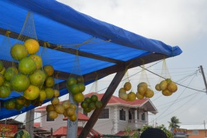 Oranges and passion fruits on sale at the market