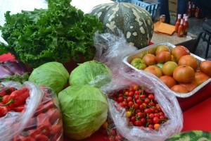 Organic produce on display at an agro-fair