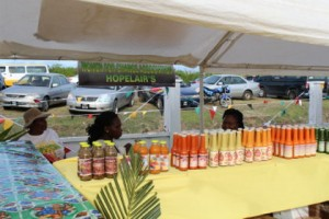 berbice-based-ngo-hopelairs-displaying-locally-produced-condiments-at-the-mma-open-day-activity