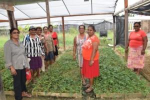 Women of the Woodley Park farmers' group, Region Five