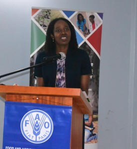 Ms. Elizabeth Riley, Deputy Executive Director, CDEMA