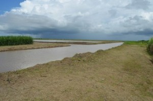 The rehabilitated fields and canals as well as fallows that were created as part of maintenance of the lands at Uitvlugt