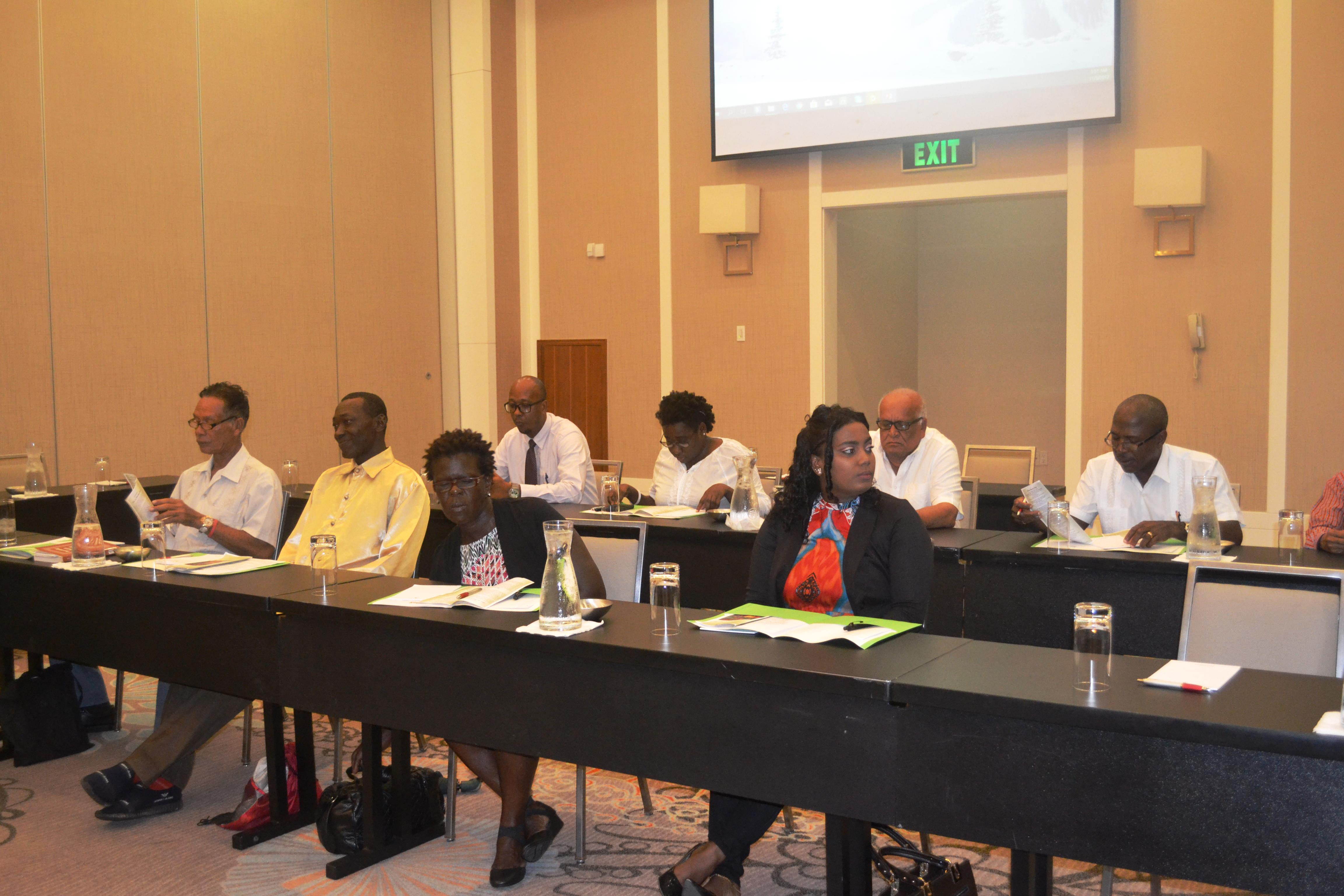 Participants at the consultation