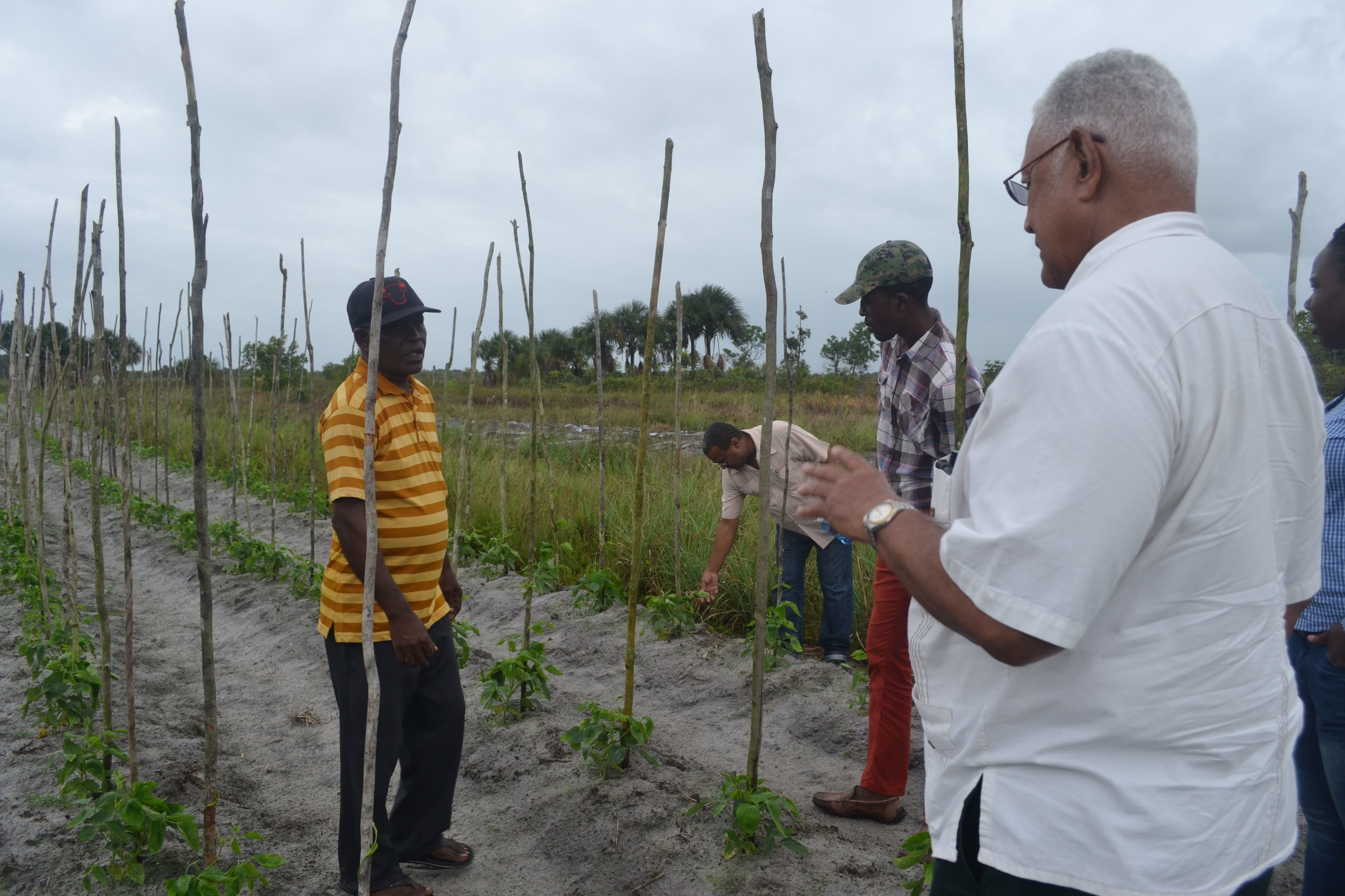 Minister Holder and Mr. Mr. Deonarine Khedu (wearing a striped t-shirt) on his cash crop farm