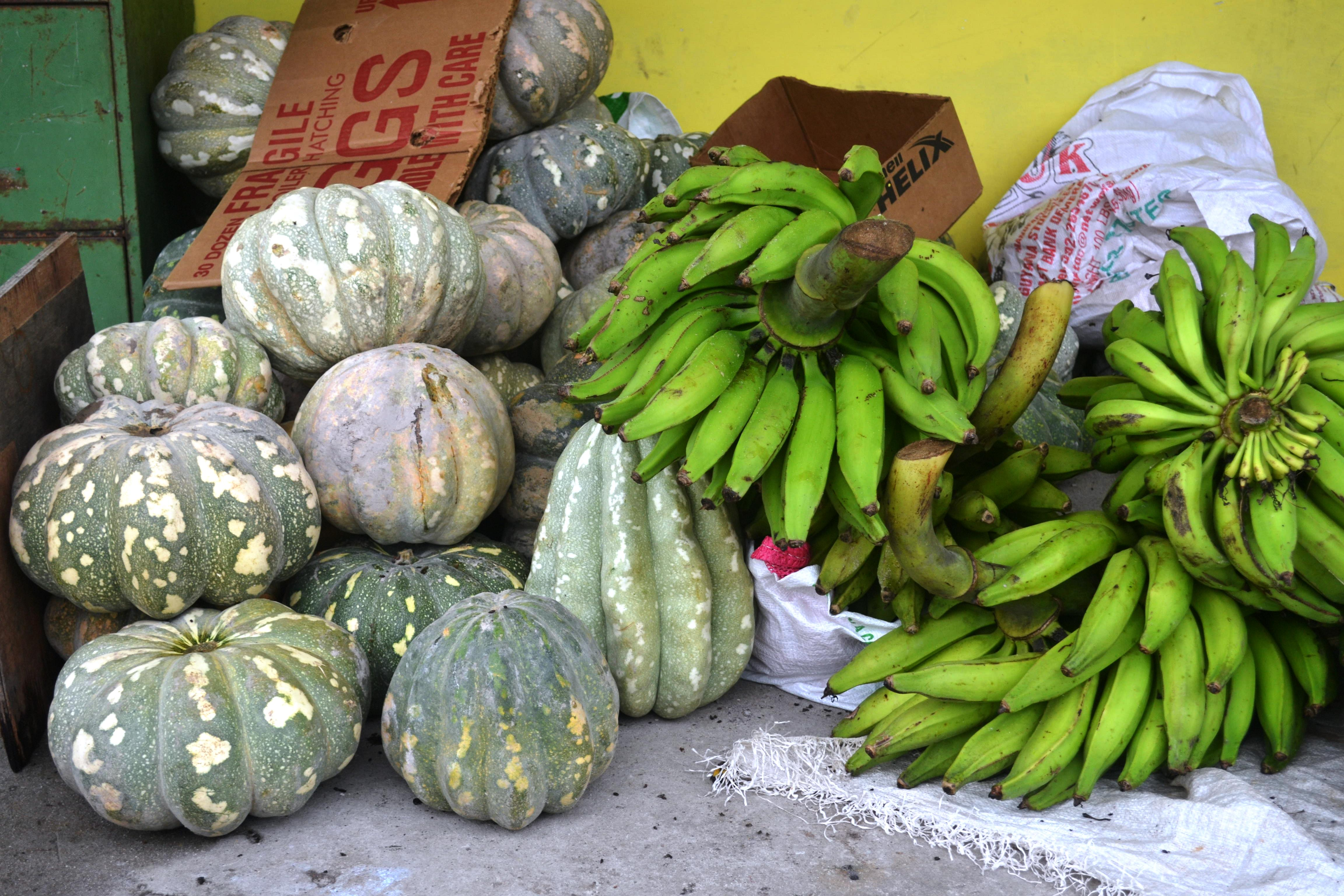 Some of the crops from Mr. Khedu's farm