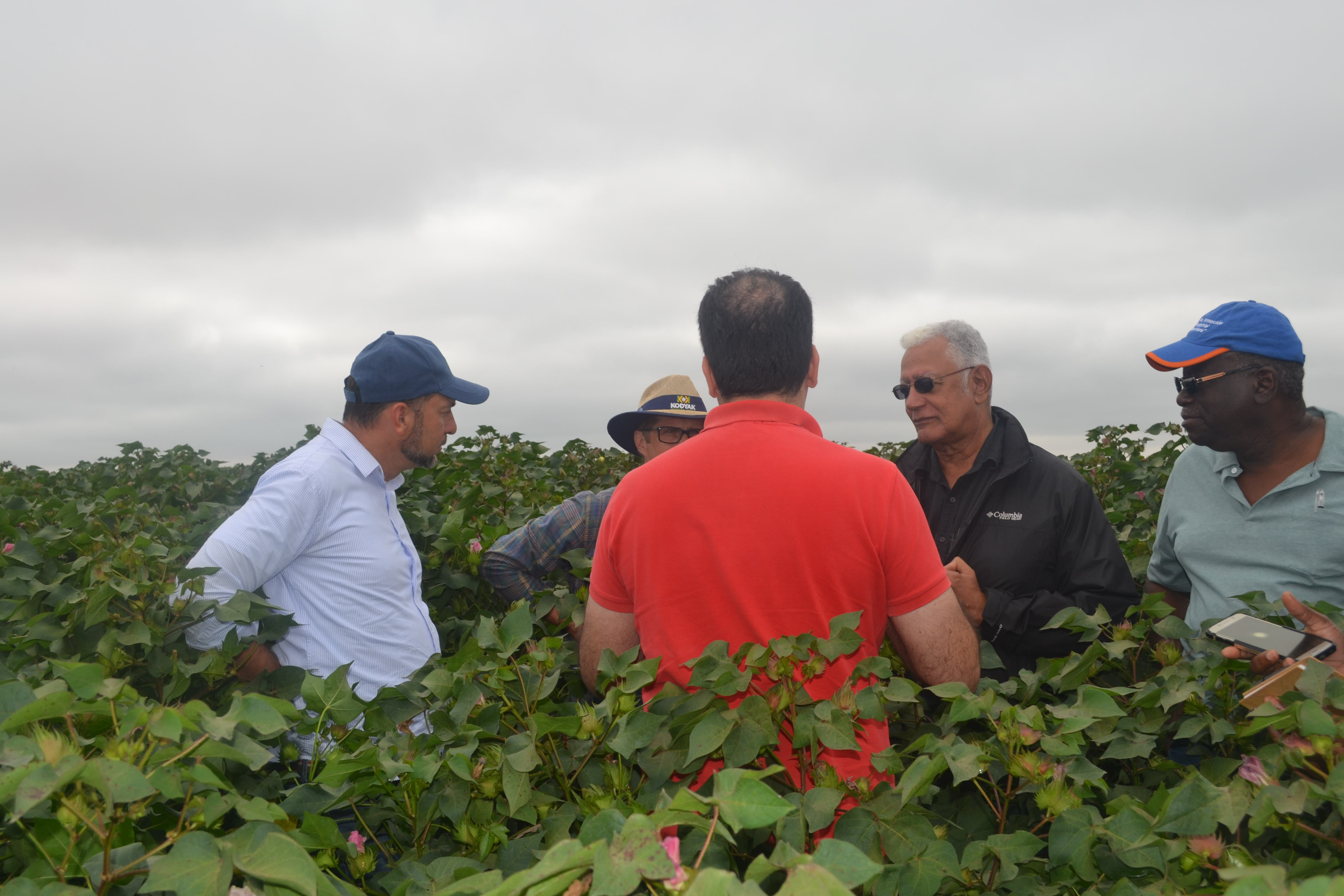 Minister Holder in discussion with some of the team while in a Soy Bean farm