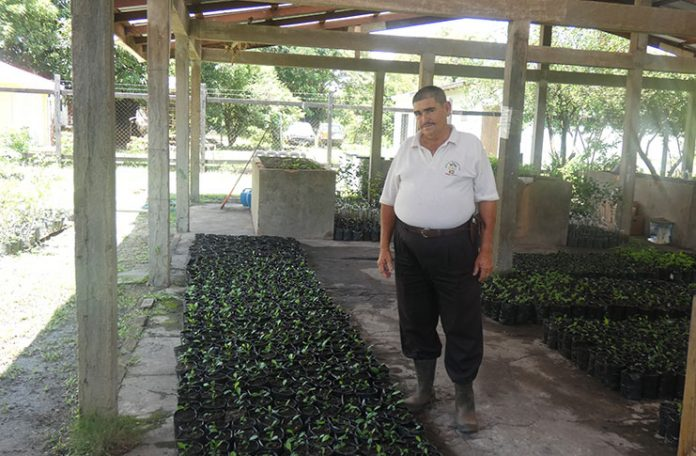NAREI Farm Manager Joseph Gonsalves